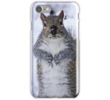 Shocked Squirrel iPhone Case/Skin