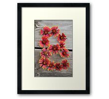 B flower Framed Print