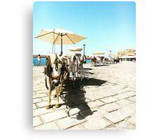 Horse Parade  Canvas Print
