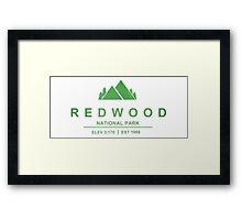 Red Wood National Park, California Framed Print
