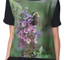 Bumble on a Butterfly Bush Chiffon Top