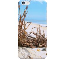 Driftwood and Shells iPhone Case/Skin