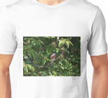Eastern bluebird Unisex T-Shirt