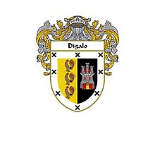 Digalo Coat of Arms/Family Crest Photographic Print