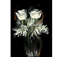 Roses and Feathers Photographic Print