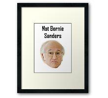 Not Bernie Sanders Framed Print