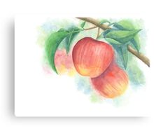 Watercolor Painting of Apples on a Tree with Defocused Background  Canvas Print