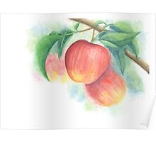 Watercolor Painting of Apples on a Tree with Defocused Background  Poster