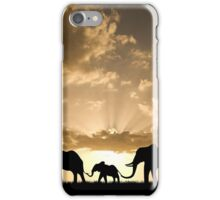 Elephant Family at Sunset  iPhone Case/Skin