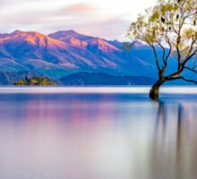 That Wanaka Tree Sticker