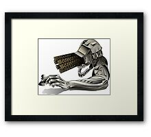 Check Mate! Framed Print