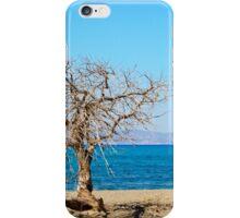 Amazing Beach of Chrissi Island, near Crete, Greece iPhone Case/Skin