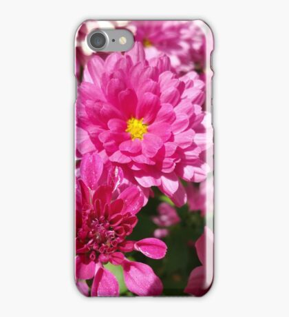 Magnificent Marvelous Mums iPhone Case/Skin