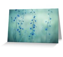 Midnight Meadow Greeting Card