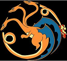 House Charizard Photographic Print