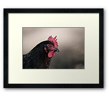 Hen Portrait Framed Print