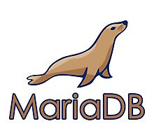 mariadb maria database programming  Photographic Print