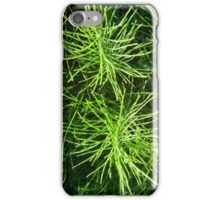 Horsetail twins iPhone Case/Skin