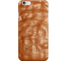 Chocolate Tim Tam iPhone Case/Skin