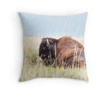 American Bison Throw Pillow