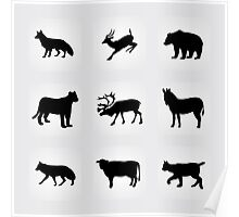 animals icons,vector illustration Poster