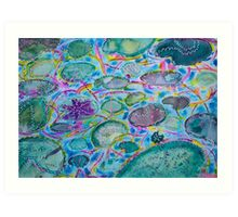 Secret lily pond Art Print