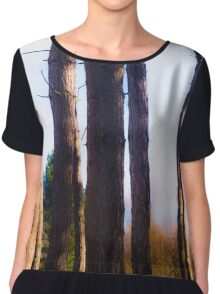 Tree trunks Women's Chiffon Top