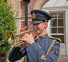 Arm Forces  Day Bromley Kent by Keith Larby