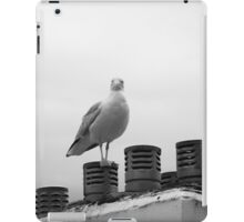 Who are you looking at iPad Case/Skin