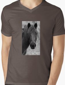 Nulla Mens V-Neck T-Shirt