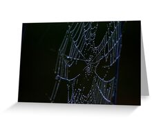 Morning Web on the Highway Greeting Card