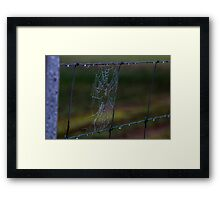 Fence Web in the Morning Dew Framed Print