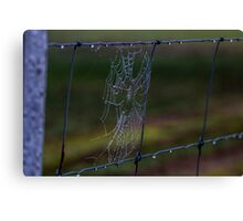 Fence Web in the Morning Dew Canvas Print