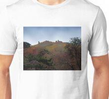 Dinas Bran Castle Unisex T-Shirt
