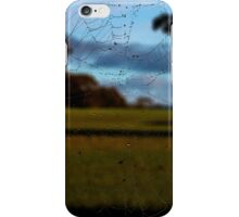 Looking Through the Web iPhone Case/Skin