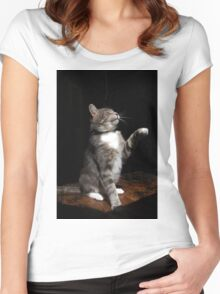 Aloof cat Women's Fitted Scoop T-Shirt