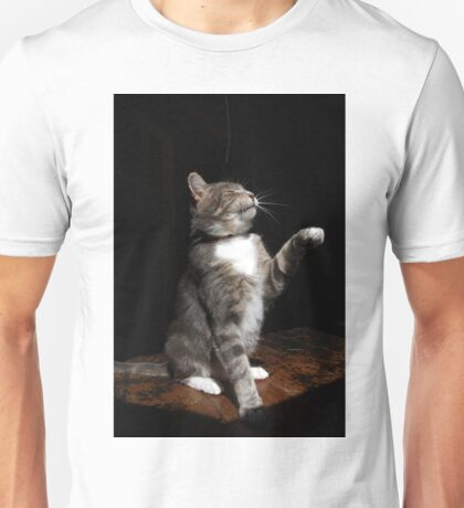 Aloof cat Unisex T-Shirt