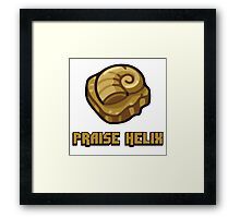 Praise Helix Fossil T-Shirt Twitch Plays Pokemon Framed Print