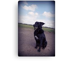 Dog with Ball Canvas Print