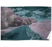 infrared photography  Poster