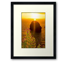 virgin rock with wild flowers sunset Framed Print