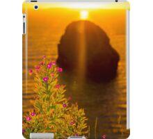 virgin rock with wild flowers sunset iPad Case/Skin