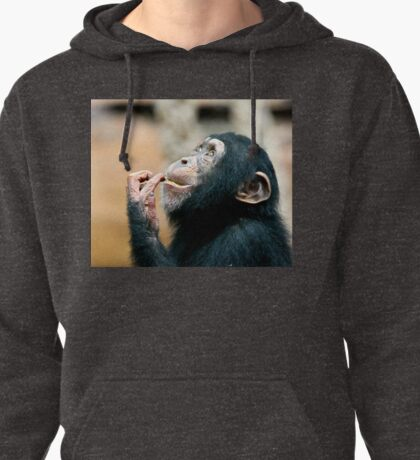 Young Chimp Pullover Hoodie