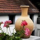 Begonia and a Clay Vase by brijo