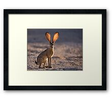 Let the Sun Shine Through Framed Print