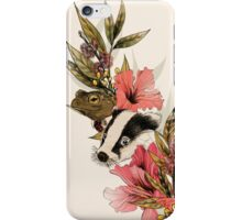 The Wind In The Willows iPhone Case/Skin