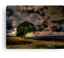 In His Arms of Love Canvas Print