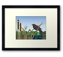 Red Wing Black Bird Perched on Reed in Wetland Marsh  Framed Print
