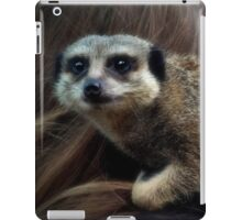 Can you take this hair off my nose please? iPad Case/Skin