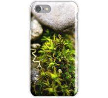 Little tree iPhone Case/Skin